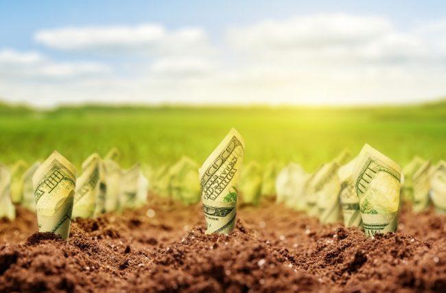 DINHEIRO PARA NEGÓCIO: 9 maneiras de conseguir dinheiro para o seu negócio
